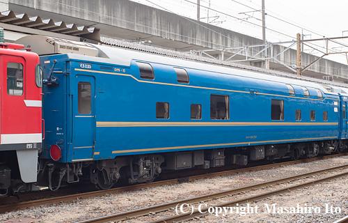 オロハネ24 501