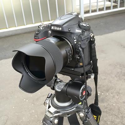 Tamron F013 を装着した Nikon D800E