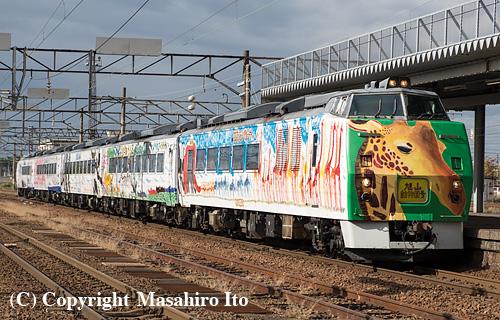 岩見沢駅に入線する臨時特急「旭山動物園号」